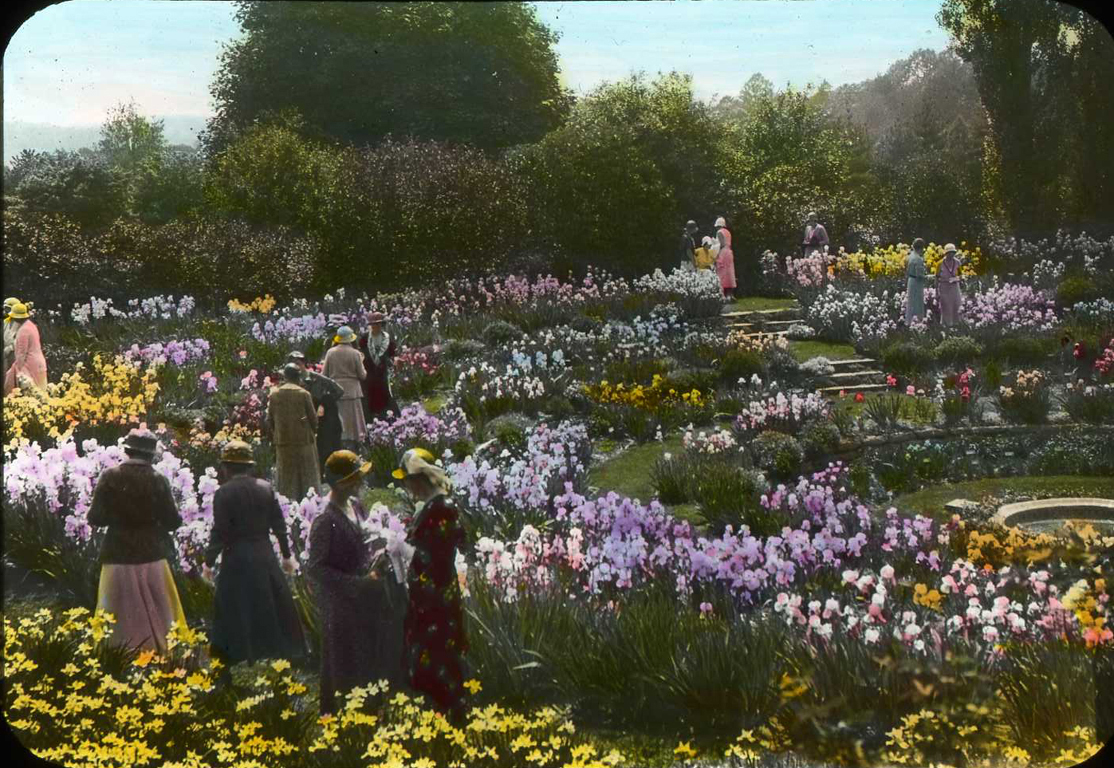 Garden Club of Philadelphia Members' Gardens Lantern Slide Collection