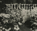 Burpee garden exhibit, 1929 Philadelphia Flower Show